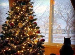 как украсить елку к Новому году